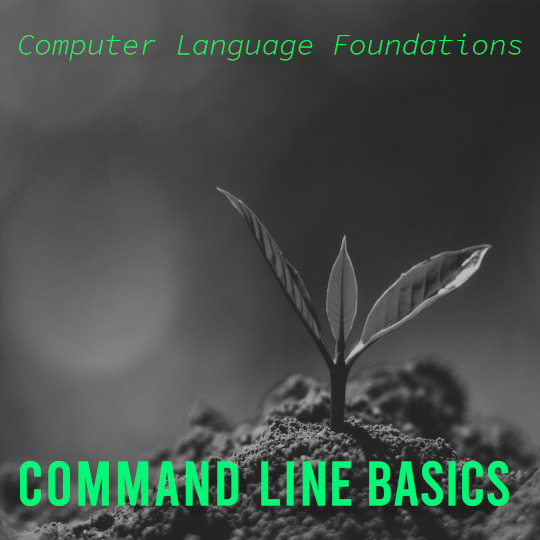 Poster for Computer Language Foundations: Command Line Basics