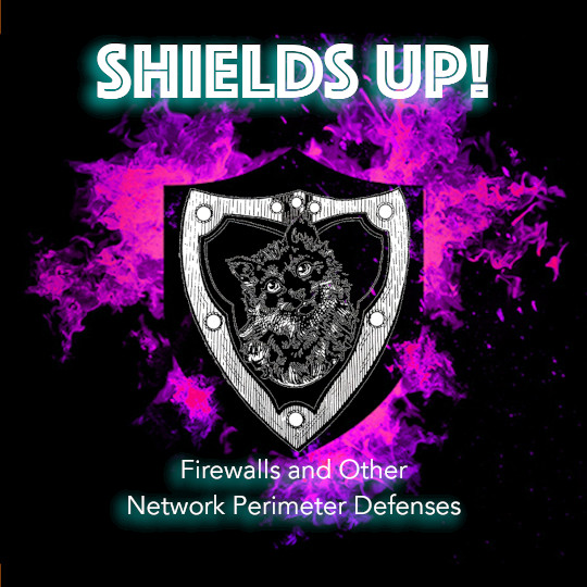 Poster for Shields Up: Firewalls and Other Network Perimeter Defenses